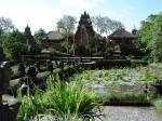 ubud_lotus garden